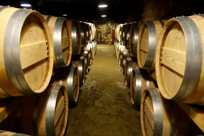 The cellar at Tertre Roteboeuf